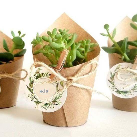idea bomboniera matrimonio piante grasse